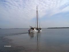 Segeln 028 (Sraddhabandhu) Tags: medusa segeln ijsselmeer wittewiefke