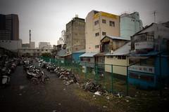Tsukiji Market 004