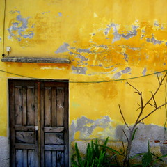 wired (msdonnalee) Tags: door house mxico mexico casa puerta  entrance doorway porta mexique porte portal tr entry yellowwall messico olddoor casaamarilla  i facciate  fineartphotos oldwoodendoor omot igress artlegacy colorartawards yellowstucco engress bestofmywinners photosbydonnacleveland