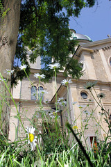 Church Daisys (cwgoodroe) Tags: blue summer sun alps hot church grass switzerland boat europe suisse swiss mountaintown zurich sunny