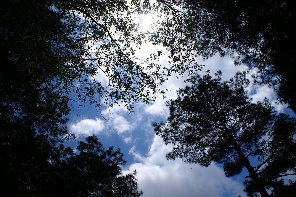 南湖大山day5-62