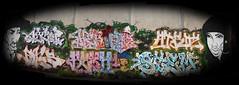 Elche-Madriz (FONSMOTE) Tags: stem prs rois atroz aigor reon fonsgraffiti fonsprs elchegraffiti brakeherizo