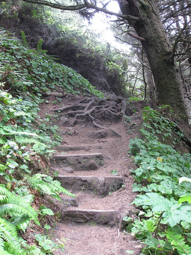 Steep path