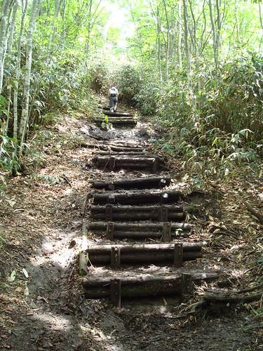 muddy steps