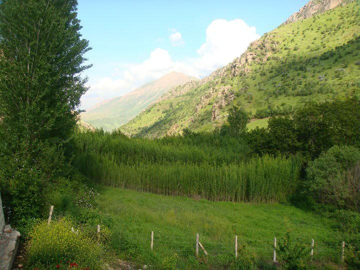 جمال الطبيعة كردستان العراق 5744696290_619f659977_b.jpg
