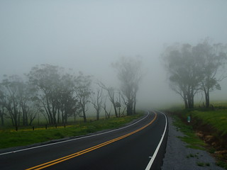 Hawaii Road into the Vog