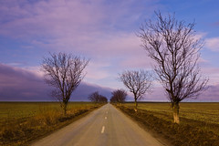 The road ahead (Raoul Pop) Tags: road trees winter canon long flickr seasons flat time saturday romania straight sabbath gettyimages smugmug gradina canoneos5d dobrogea googlephotos
