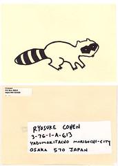raccoon for brain cell