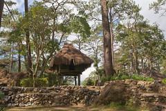 Hungduan Nipa Hut (rhilton4u) Tags: philippines filipino baguio pinoy pilipinas nipa benguet baguiocity nipahut ibaloi ilocano cordilleras summercapital hungduan