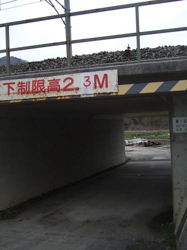 DSCF7497