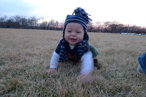 Jack on grass