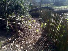 Heath path - after
