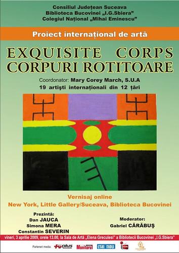 03 Martie 2009 » Duplex expozitional New York - Suceava