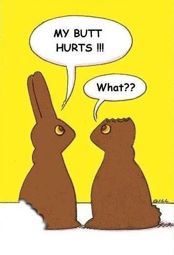 the chocolate bunny's dilemma