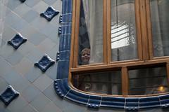 (delmarfoto) Tags: barcelona spain casabatllo casabatll