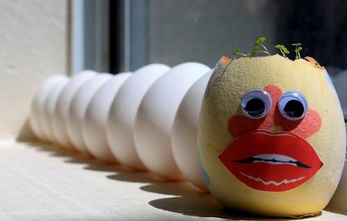 Octo-Egg