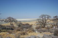 Kubu Island (Jennifer Callaghan) Tags: botswana pans kubuisland flickrunitedwinner