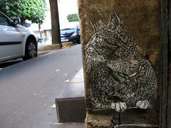 C215 - Paris (Vitry) (C215) Tags: streetart art french graffiti stencil christian pochoir masacara szablon c215 schablon gumy piantillas