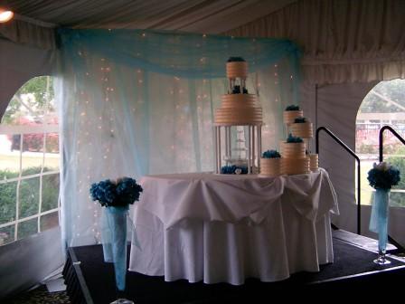 Wedding cake backdrop