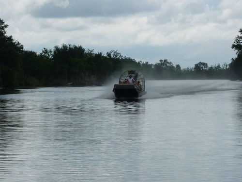 Day 4 airboat swamp tour 033