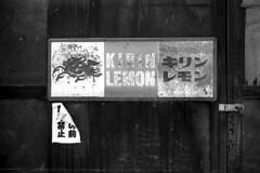 (M6 Panda) Tags: leica bw public zeiss kodak iso400 28mm hiroshima tmax400 m6 takehara biogon b28 tmaxdeveloper 400tmx