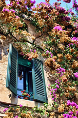 Sirmione, Lake Garda Italy (sminky_pinky100 (In and Out)) Tags: travel flowers italy tourism window europe pretty vine shutter colourful sirmione lakegarda the personalbest 5photosaday bej mywinners omot eyejewel perfectphotographer