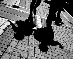 Chatlines (Steve-h) Tags: street ireland people dublin shadows finepix fujifilm steveh flickraward platinumheartaward s100fs flickraward5