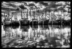 7 Boats #1 (James Loesch) Tags: reflection boats blackwhite newjersey barnegat barnegatlight obramaestra