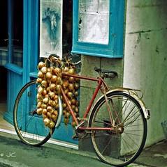 ~ La bicyclette de Jean-Luc LE BALP ~ (Jaep Kees Reitsma) Tags: union roscoff bretagne onions johnny 29 johnnie oignons finistère labicyclettedejllebalp carréfrançais