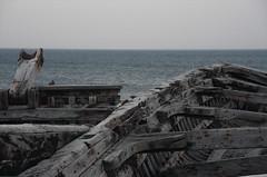 Free Port (ghostwriter71) Tags: italien italy sicily tuna sizilien bonagia