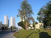 Tel-Aviv_4201