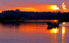 Sunset at Costa Park - Curitiba, Paraná... (Arlete Reino Pellanda) Tags: sunset brazil nature paraná reflections natureza liberdade pôrdosol curitiba reflexos goldenphotographer parquecosta