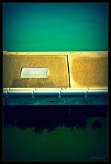 Stratification (bkiwik) Tags: newzealand seaweed water digital canon path floating auckland walkway nz layer northisland float ao