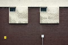 (Delay Tactics) Tags: street windows wall silver eyes head pair sheffield bricks explore spongebob asymmetric