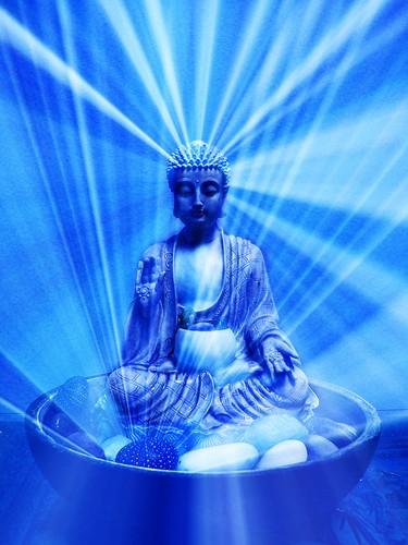 Blue Buddha, in the Abhaya Mudra, bowl, rocks, sea urchin, Nelson, New Zealand