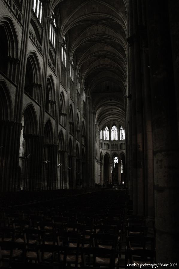Notre Dame #1