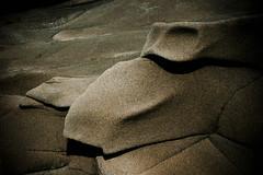 sleeping salamander (Lisa{santacrewsgirl}) Tags: beach northerncalifornia rock sandstone hwy1