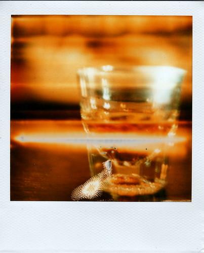 Scotch n