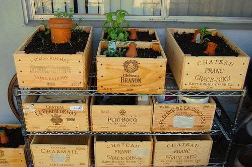 wooden crates used as planters