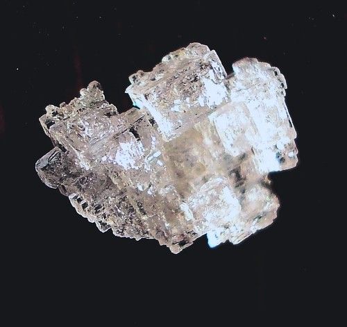 DSC01561