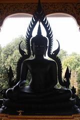 20080316_0632  Wat @ Ban Mae Taeng,วัดบ้านเด่นสะหรีศรีเมืองแกน (ol'pete) Tags: hall buddha buddhist statues buddhism images chiangmai canoneos350d lanna thialand assemblyhall buddhastatue buddhaimage ประเทศไทย maetaeng 5photosaday รูปปั้น wihan lannastyle buddharupa earthasia worldtrekker วิหาร ศาสนาพุทธ อแม่แตง พระพุทธเจ้า พุทธศาสนิชน bantaeng lannaart วัดเด่นสะหรีศรีเมืองแกน watdensareesrimuanggaen พระพุทธเจ้ารูปปั้น amaetaeng doilopete peterwrichards