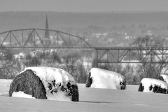 Frosted mini wheats and the city of Fredericton N.B. (mikie t) Tags: city winter snow view cathedral farm sigma fredericton lincoln hay bales 500mm princessmargaretbridge nbphotos
