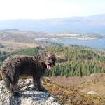 Dougal agus am Ploc thumbnail