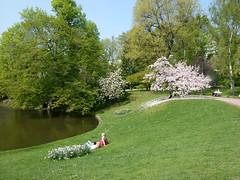 Wiesbaden Kurpark (Mollyllein) Tags: wiesbaden kurpark