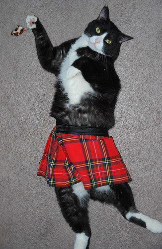 Tippy doing the Highland Fling with his pet mouse.