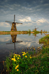Kinderdijk Flowers (Philipp Klinger Photography) Tags: flowers light sunset sky cloud flower holland reflection green mill water netherlands windmill grass yellow clouds landscape evening canal nikon great nederland topf300 nl polder philipp paysbas spiegelung soe kinderdijk molens zuidholland ridderkerk klinger moulins alblasserdam nieuwlekkerland worldbest anawesomeshot d700 overtheexcellence dcdead goldenart