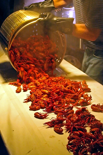 A Bounty of Crawfish