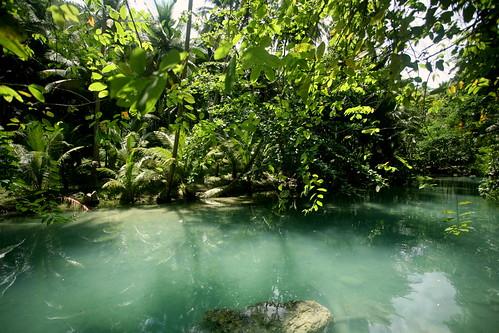Kawasan stream