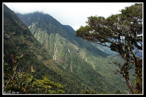 Mesilau Route