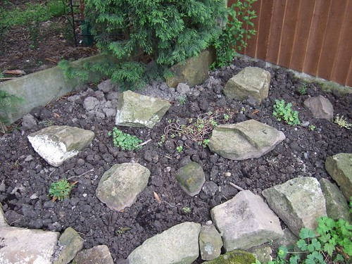 Rockery at the bottom of the garden